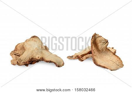 Dried Galangal on white background food herbal