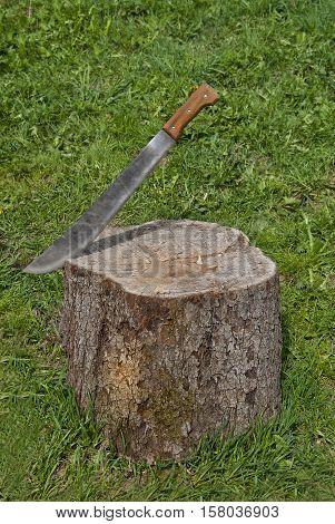 Rusty machete stuck in the wooden stump