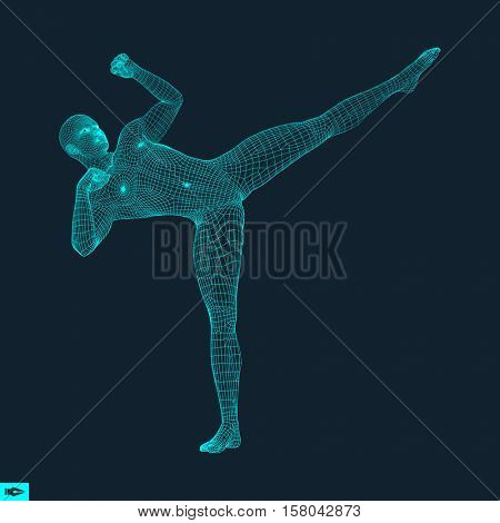 Fighting Man. 3D Model of Man. Polygonal Design. Business, Science and Technology Vector Illustration. 3d Polygonal Covering Skin. Human Polygon Body. Human Body Wire Model.