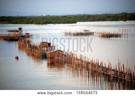 Fishing traps in Net Fishing Thailand, Thailand Shrimp Fishing,Thailand.