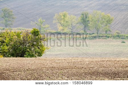 Incredible patterns on waved fields of South Moravia called the Moravian Tuscany green and brown autumn colors. Czechia.