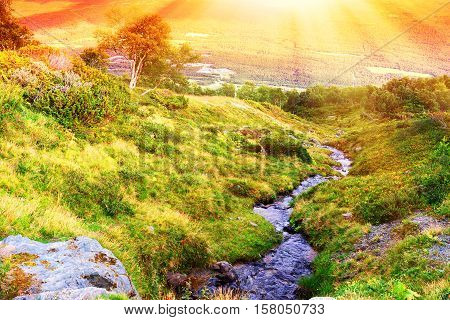 Norway mountain stream with light leak background hd