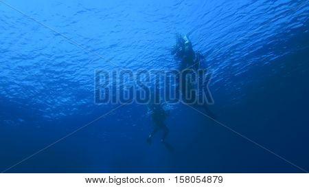 Silhouette Scuba Diving.