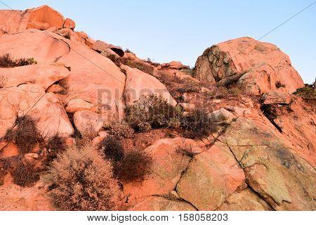 Rocky barren landscape with drought tolerant chaparral plants taken near Riverside, CA