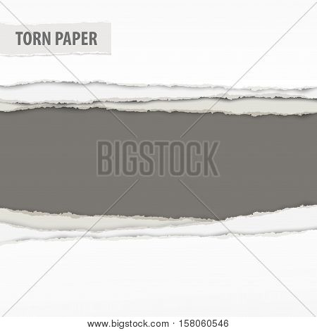 Torn Paper Pieces On Grey
