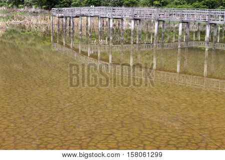 The soil dried had under the flooded and reflection bridge wood. Under water see through of Drought still see traces