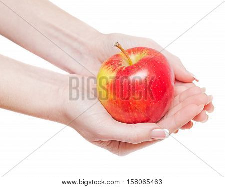 Red apple in hands isolated on whine background.