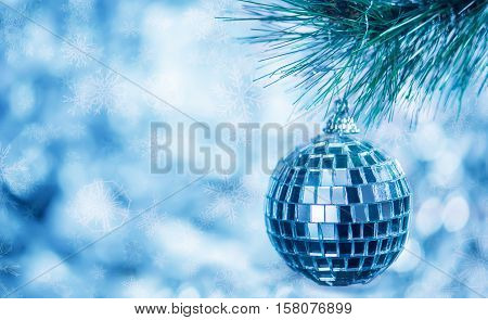 Christmas toy on a branch of spruce blue background