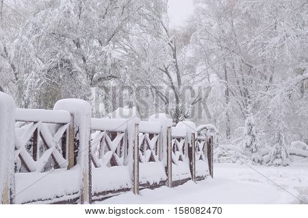 snow on a wooden fence as a forrest background image