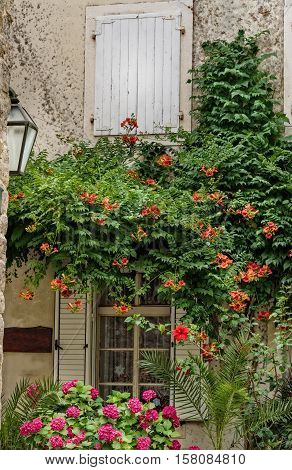 Mediterranean style architecture decorated with a colorful display of flowers and ivy.
