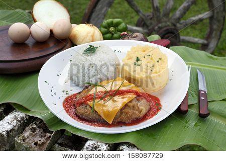 parmigiana steak