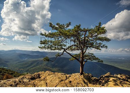 Blue Ridge Mountains from Ravens Roost Overlook in Virginia