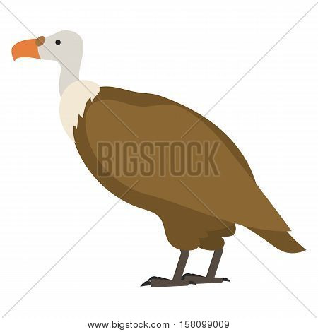 flat bird isolated on white background, beautiful vector illustration gyps fulfus, griffon vultures, bird of prey