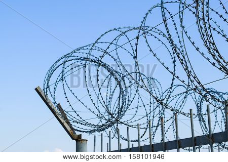 Barbed Wire On The Fence. Protective Fencing Specially Protected Object Of Barbed Wire. Stamped Barb