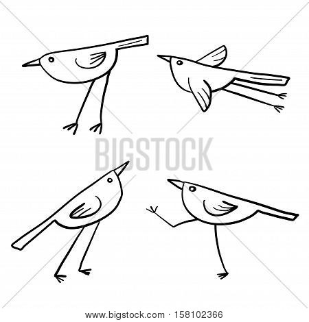 Set of 4 cute birds isolated in white in vector. Cartoon funny little birds.