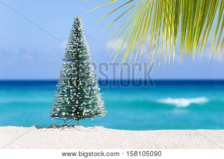 Christmas Fir Tree On Sandy Beach