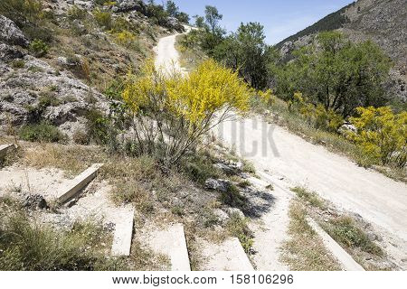 a mountain path in the ascent to Moclín town, province of Granada, Spain