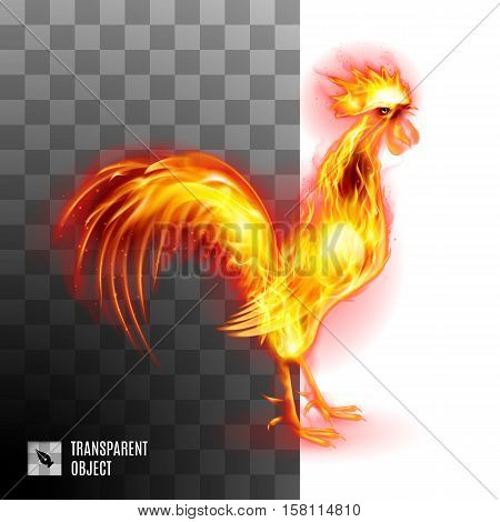 Fiery Golden Rooster On Transparent Background Symbol Chinese New Two Thousand Seventeen