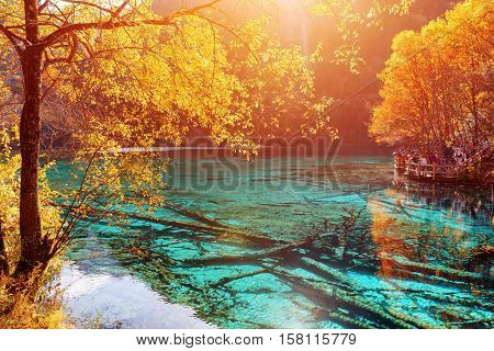 Beautiful View Of The Five Flower Lake (multicolored Lake)