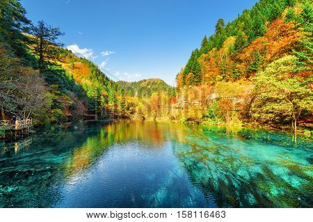 Colorful Autumn Forest Reflected In The Five Flower Lake