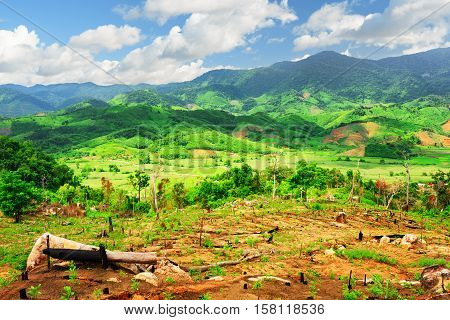 Beautiful View Of Green Rice Fields Surrounded By Mountains