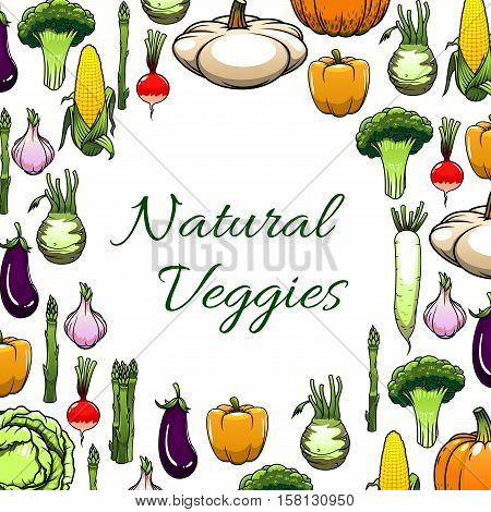 Natural veggies frame with pepper and broccoli, radish, cabbage, garlic and corn, eggplant, pumpkin and asparagus, kohlrabi, pattypan squash. Vegetarian menu, farm market poster design