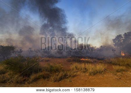 Bushfire in Western Australian outback - Pilbara region, Western Australia, Australia