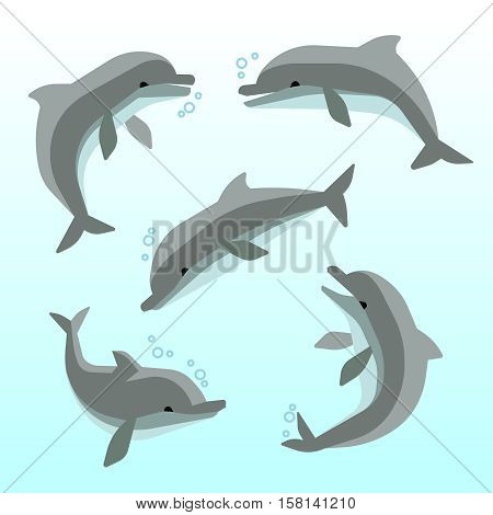 Cute dolphins in different poses vector. Set of dolphin in ocean, swimming funny dolphins illustration