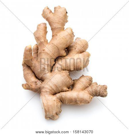 Fresh ginger root or rhizome isolated on white background cutout
