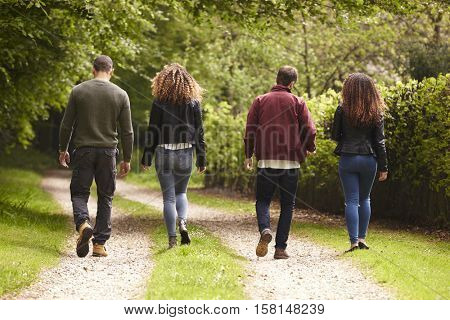 Four adult friends walking down a country lane, back view