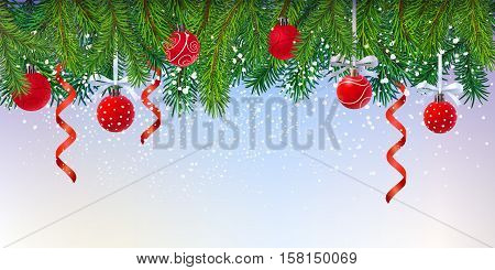 fresh green fur-tree branches forming border over blank background