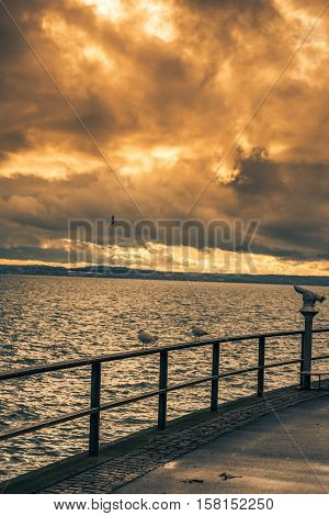 Lake boardwalk with seagulls on metal railing - Bodensee lake boardwalk with seagulls staying on the metal railing and a public binocular under a colorful sky at sunset