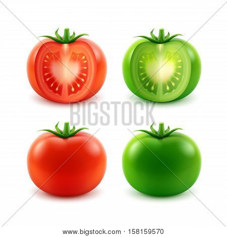 Vector Set of Big Ripe Red Green Fresh Cut Whole Tomatoes Close up Isolated on White Background