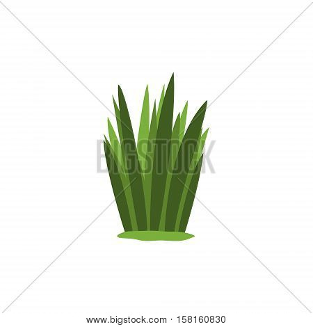 Green Swamp Sedge Weed Isolated Element Of Forest Landscape Design For The Flash Game Landscaping Purposes. Video Game Details For The Woodland Level Vector Cartoon Illustration.
