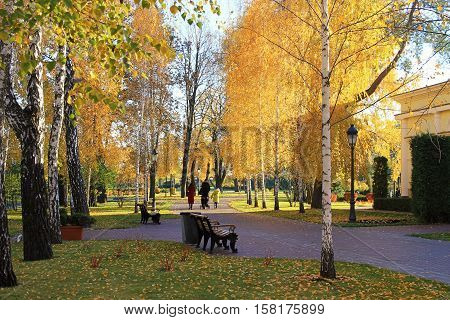 Footpath and park bench in colorful autumn park with unrecognizable walking people. Selective focus