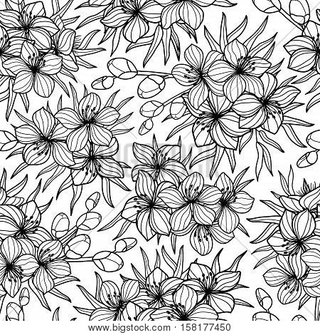 Black and white flower and leaves sketch style seamless vector pattern. Lineart, coloring, blossom seamless background print. Spring summer design for greetings, wedding cards, invitations, textile