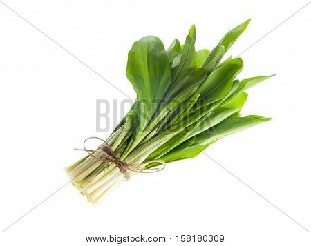 Fresh ramson bunch vegetable isolated on white background