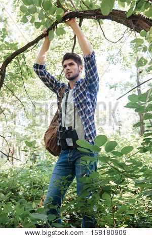 Man clinging to a tree in forest. man in shirt with binoculars and backpack. vertical image