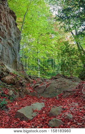 Autumn landscape in the Pyrenees mountains. Pyrenees-Orientales.