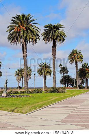 Uruguay, Montevideo, View of the Rambla promenade