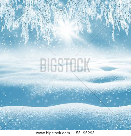 Winter background. Christmas landscape with snowdrifts and tree branches in the frost