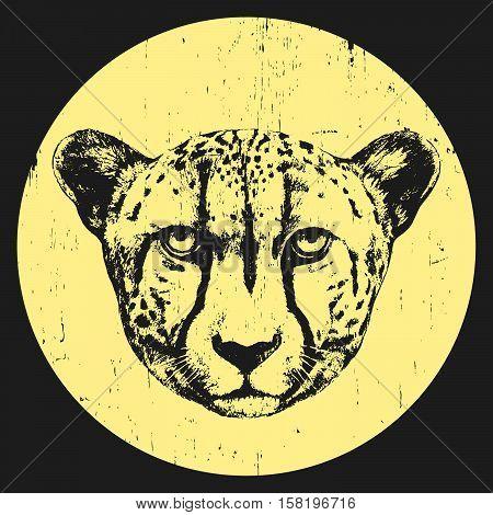 Portrait of Cheetah. Hand-drawn illustration. T-shirt design. Vector