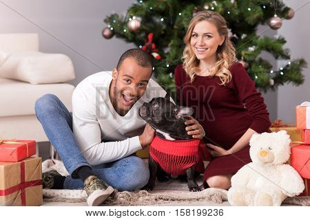 My four legged friend. Good looking delighted bearded man sitting near the Christmas tree and hugging his dog while having a great time with his family