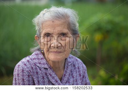 Portrait Old Asian Woman