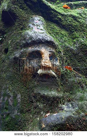Face of dwarf covered by moss - old rock relief from 1833