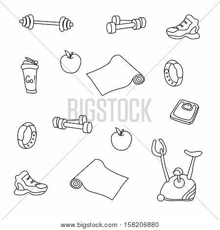 Fitness doodles. Isolated set of gym equipment. An apple, a sneaker, a sport watch, dumbbells, mats, scales, a barbell, a cycle and a shaker. Hand drawn vector EPS10.