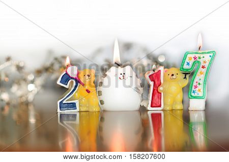 conflagrant candles of number, new-year candles, bears, cat