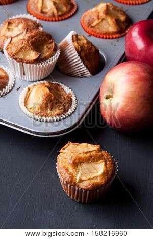 apple muffins on a black background, homemade apple muffins