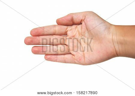 open hands style with white background,five fingers