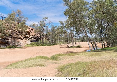 dry todd river basin rock outcropping and river red gum or eucalyptus camaldulensis trees near alice springs in northern territory of australia